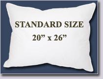 """Standard Size Pillow--20"""" x 26"""""""